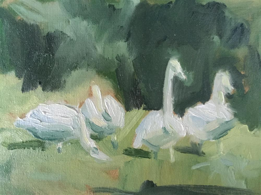 """Four Swans"" original fine art by Barb Walker"