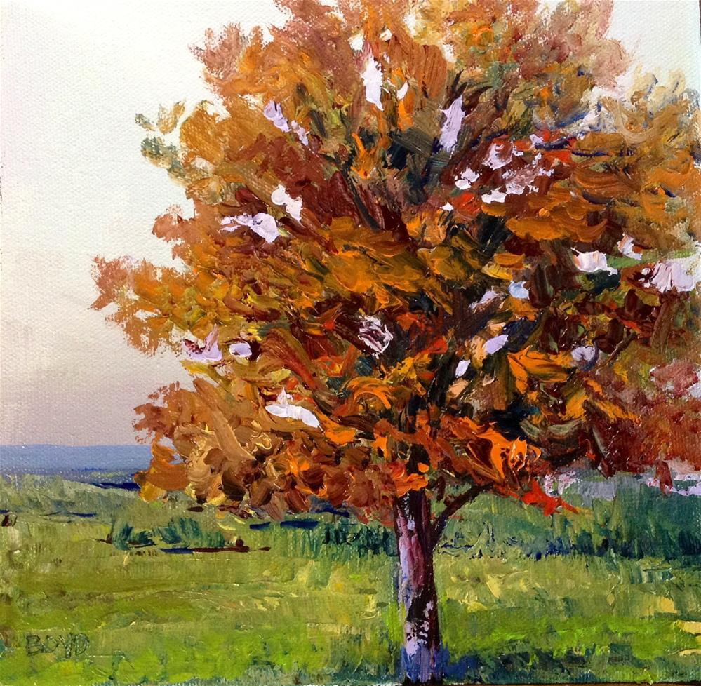 """Jacob's Tree"" original fine art by Cathy Boyd"