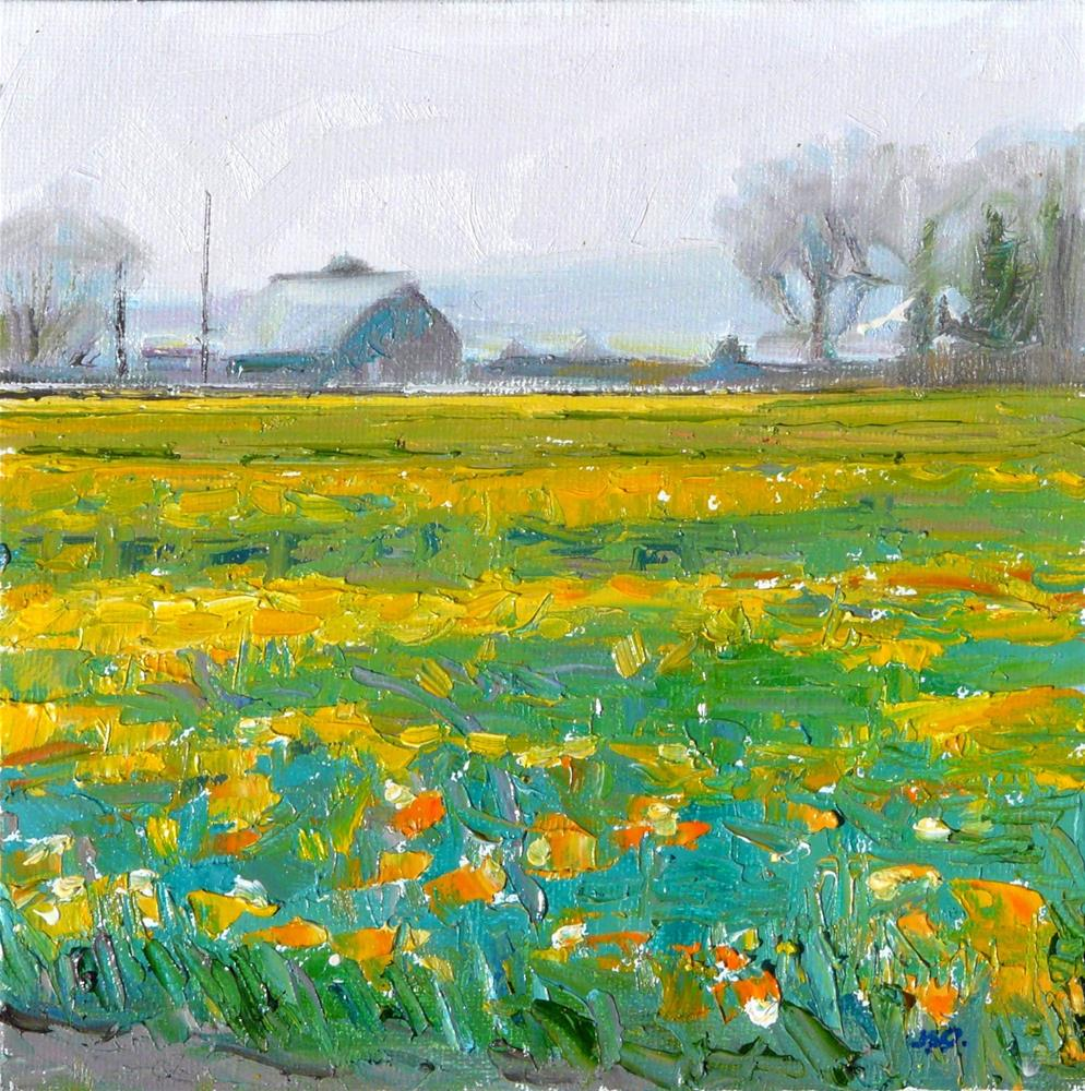 """Daffodil Farmyard,landscape,oil on canvas8x8,priceNFS"" original fine art by Joy Olney"