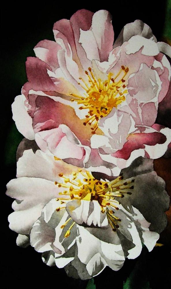 """""""Pink & White Roses"""" original fine art by Jacqueline Gnott, TWSA, WHS"""