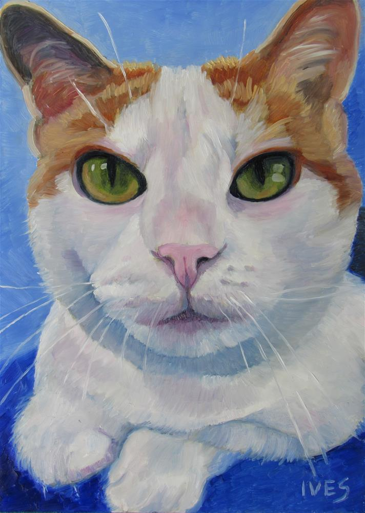 """""""Studio Cat Rosie"""" original fine art by Rebecca Ives"""