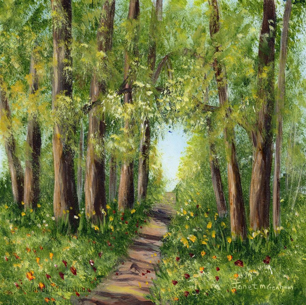 """Woodland Walk"" original fine art by Janet Graham"