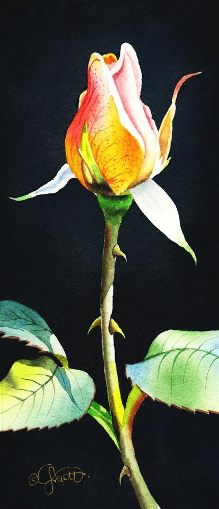 """Rosebud & New Instructional Video"" original fine art by Jacqueline Gnott, TWSA, WHS"