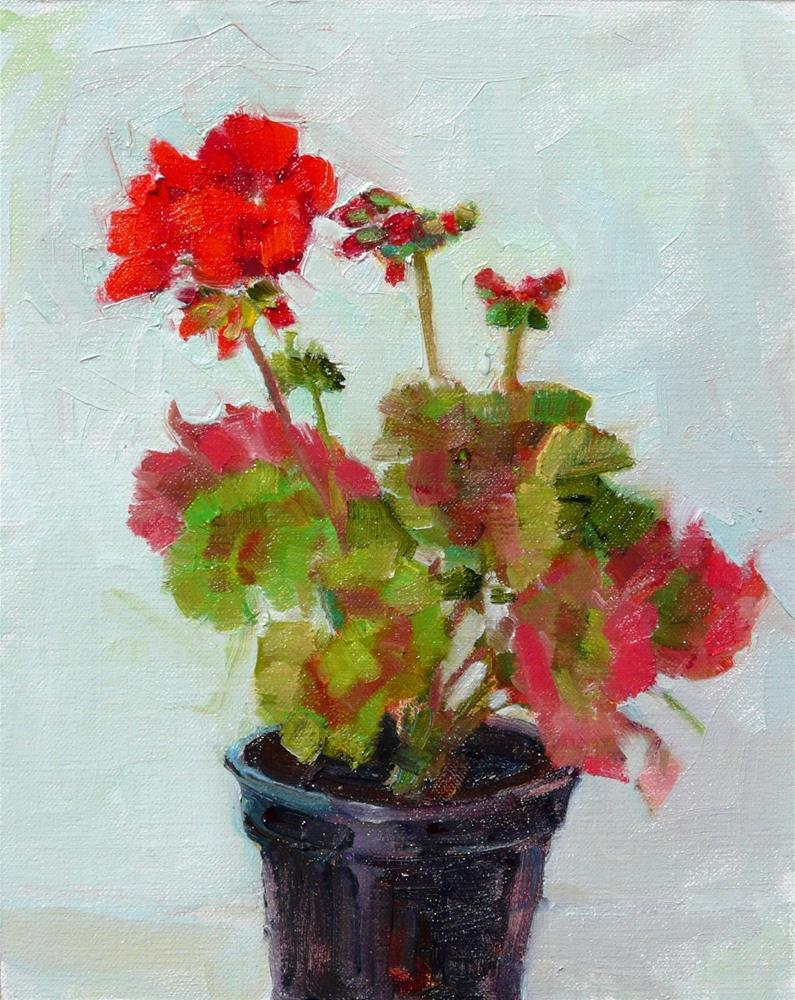 """May Geranium Plant,still life,oil on linen,10x8,price$250"" original fine art by Joy Olney"