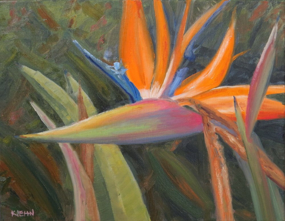 """Bird of Paradise"" original fine art by Richard Kiehn"