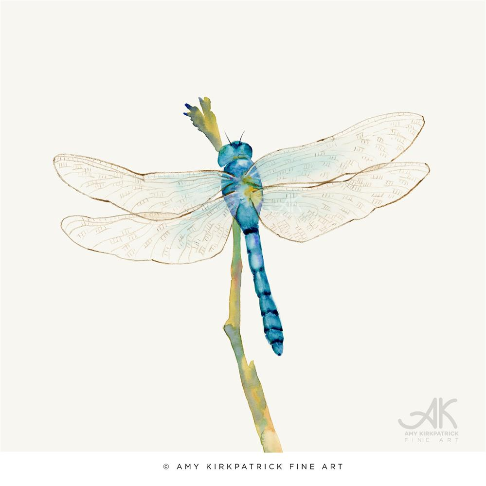 """BLUE DRAGONFLY #0450"" original fine art by Amy Kirkpatrick"