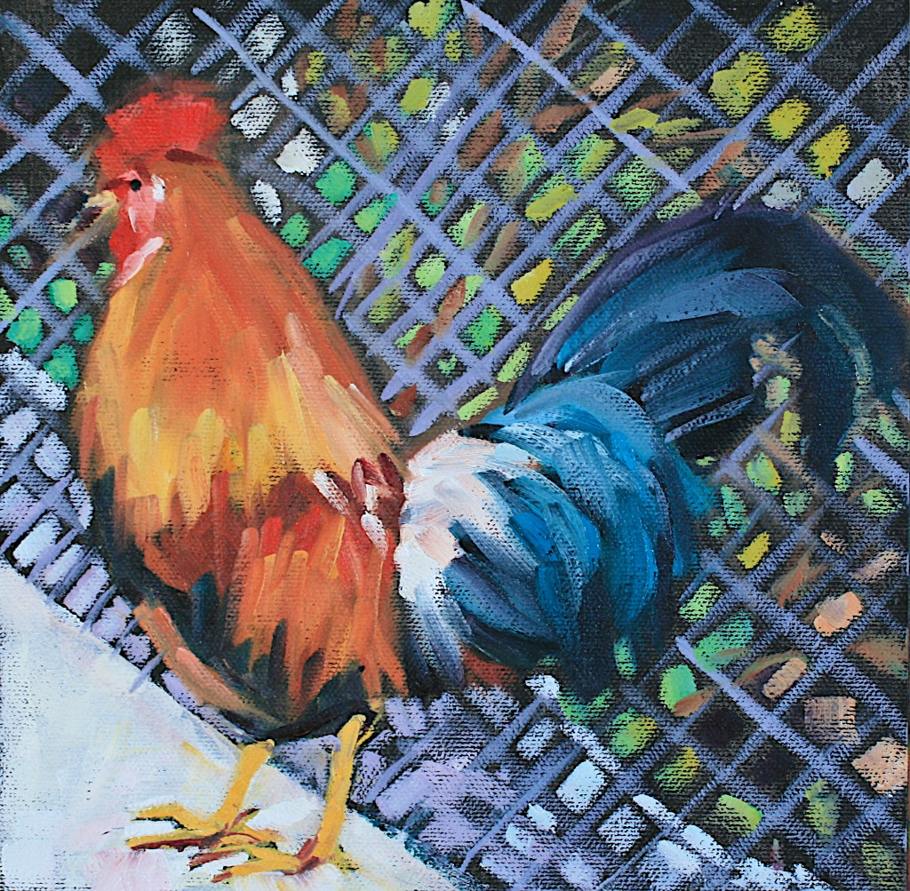 """Key West Rooster 2"" original fine art by Mary Anne Cary"