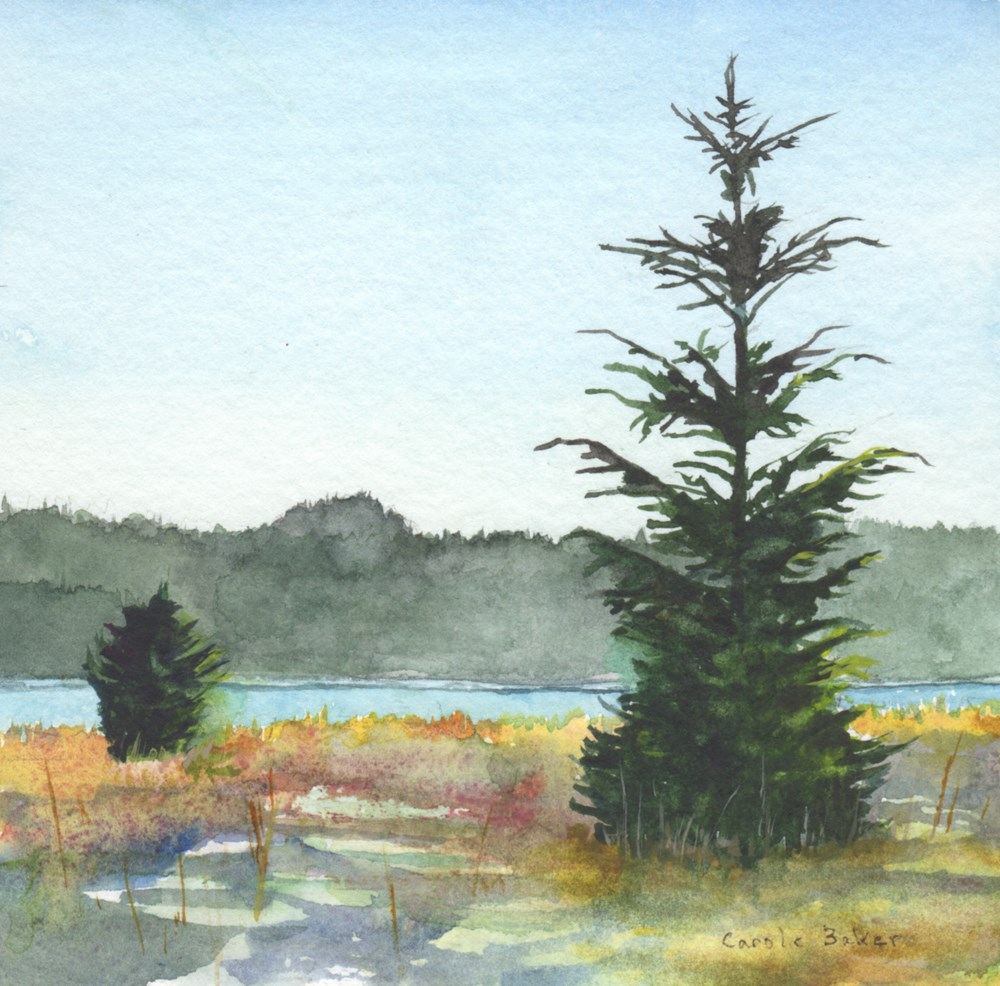 """Beer Trees"" original fine art by Carole Baker"