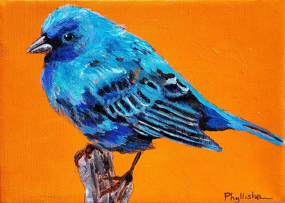 """Indigo Bunting"" original fine art by Phyllisha Hamrick"
