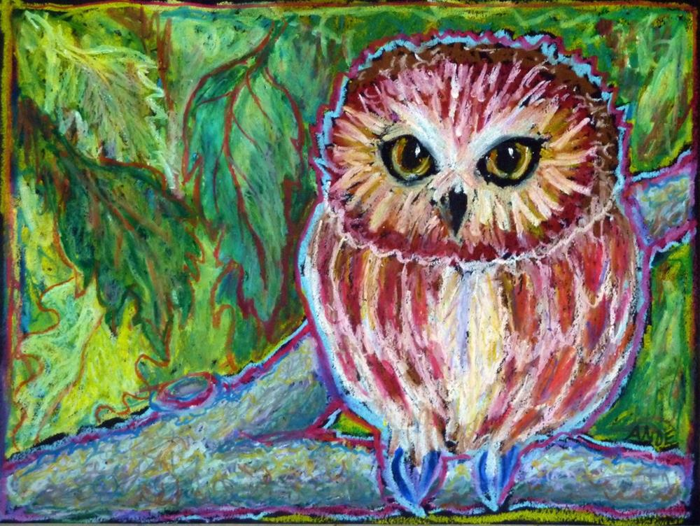 """""""Saw Whet Owl"""" original fine art by Ande Hall"""