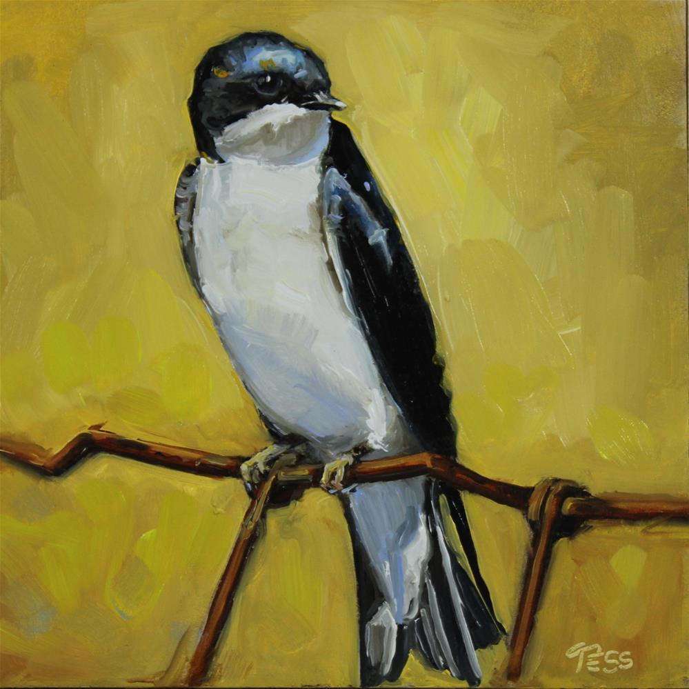 """""""Day 11- Swallow"""" original fine art by Tess Lehman"""
