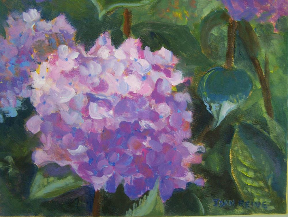 """Hydrangea"" original fine art by Joan Reive"