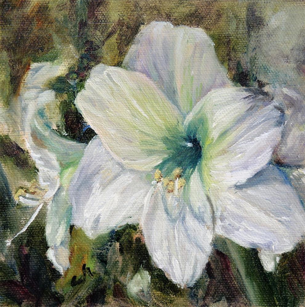 """Greenhouse Amaryllis"" original fine art by Candi Hogan"