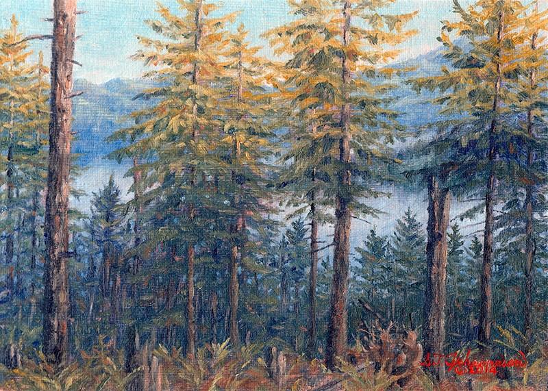 """C1564 Above the Chetco early morning Mist  (Siskiyou National Forest, near Brookings, Oregon Coast)"" original fine art by Steven Thor Johanneson"
