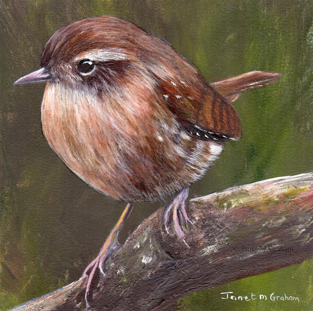 """Winter Wren"" original fine art by Janet Graham"