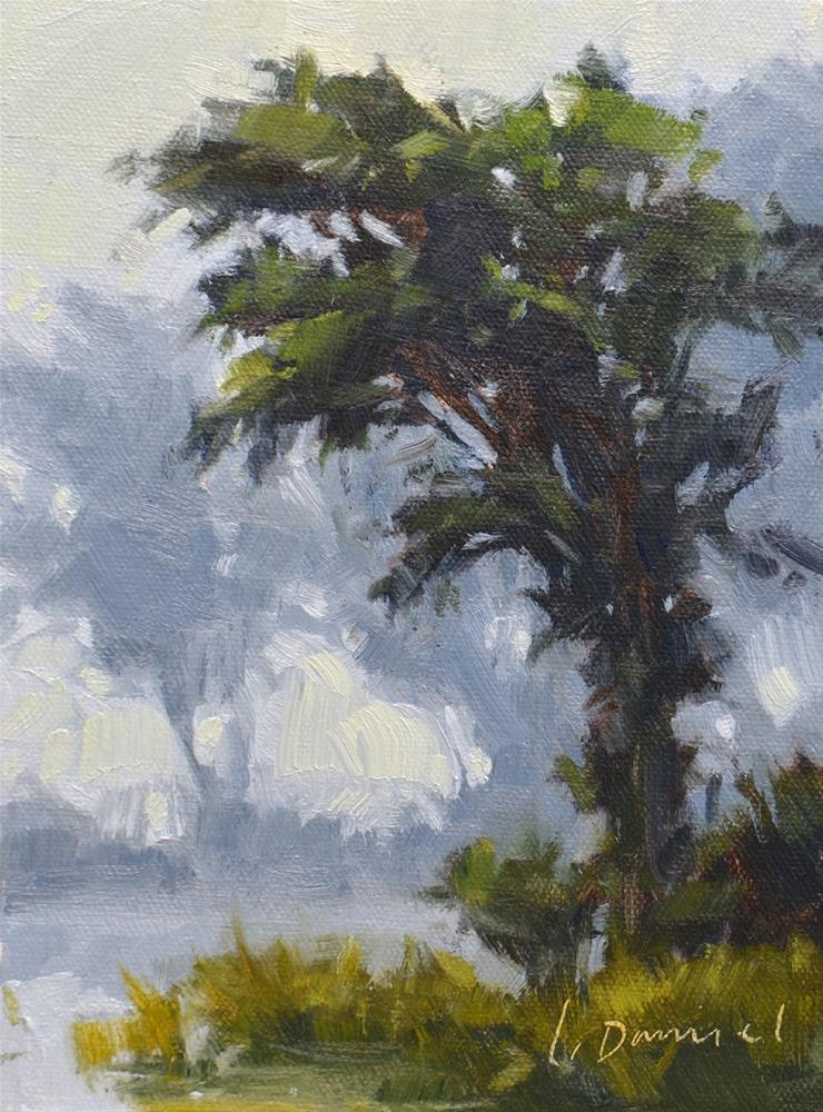 """Bowing to the Mist - Tree Gesture 2"" original fine art by Laurel Daniel"