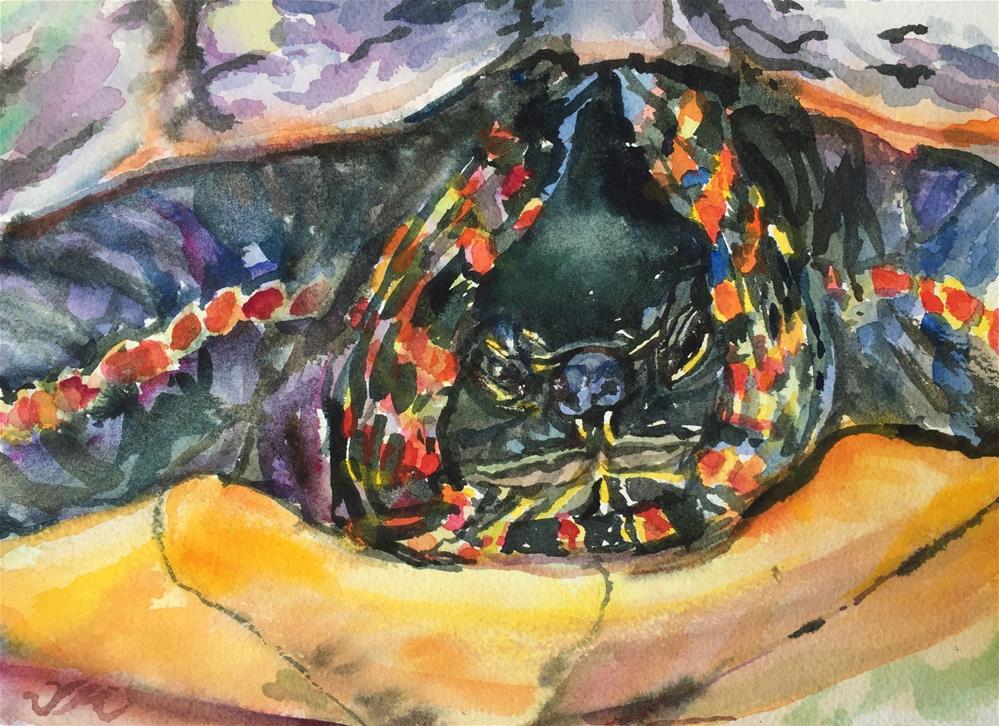 """Hunkered-Down Turtle"" original fine art by Jean Krueger"