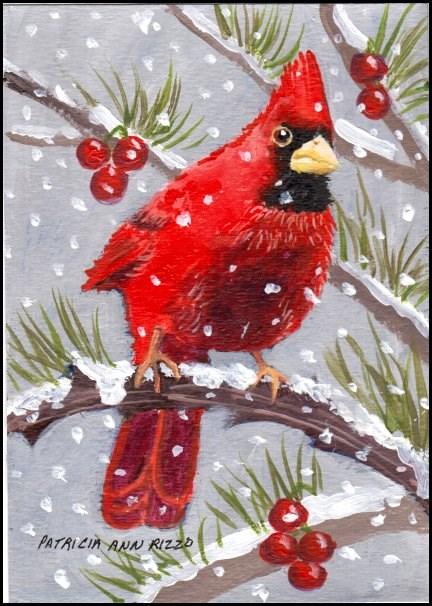 """Cardinal at Night"" original fine art by Patricia Ann Rizzo"