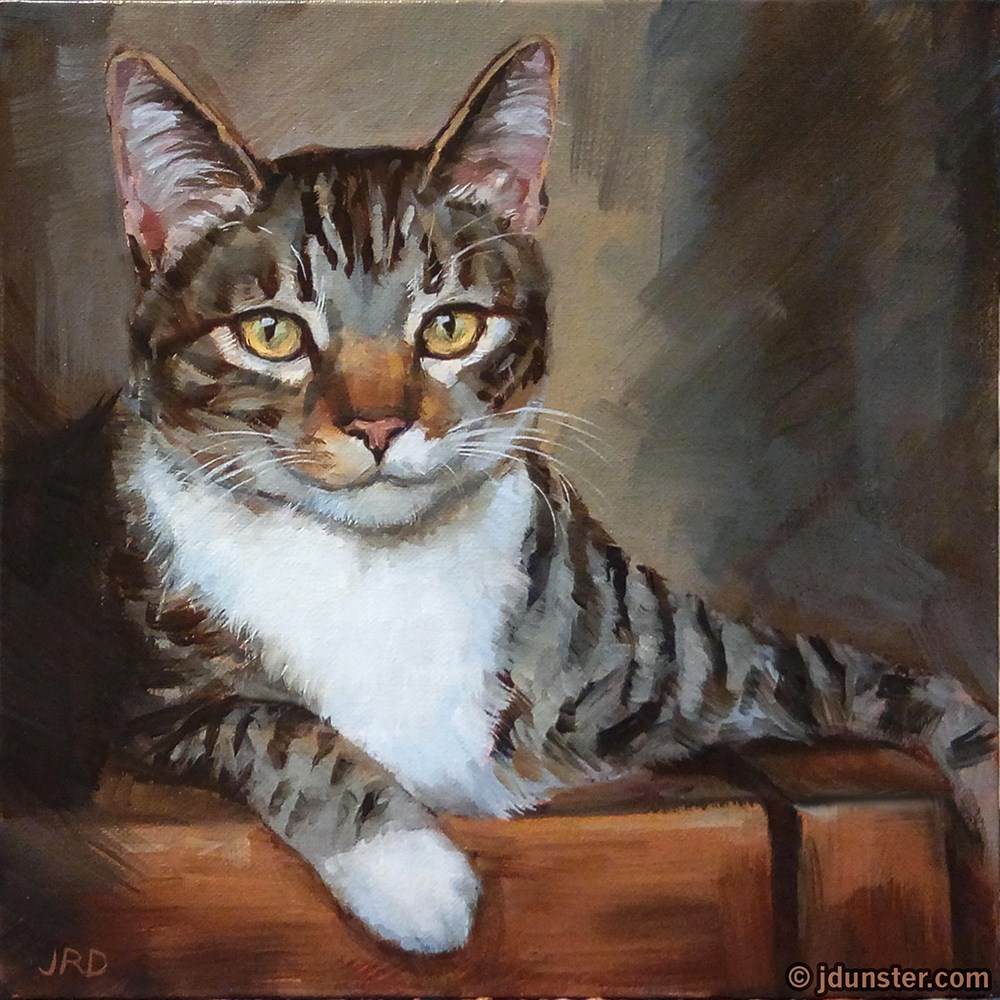 """The Most Interesting Cat in the World"" original fine art by J. Dunster"
