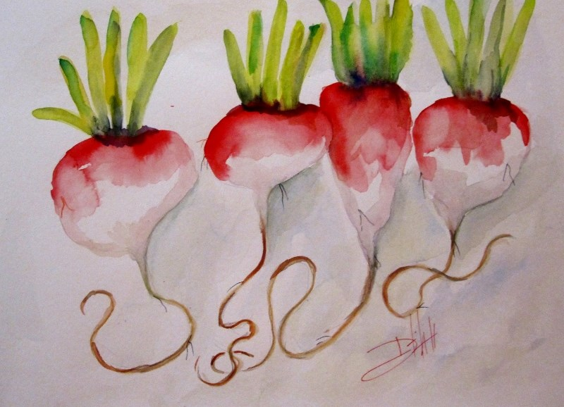 """radish"" original fine art by Delilah Smith"