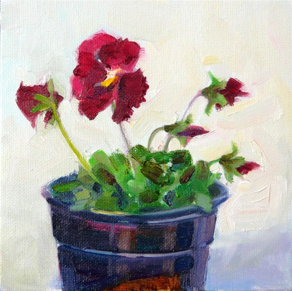 """Dancing Maroon Pansies,still life,oil on canvas,6x6,price$200"" original fine art by Joy Olney"