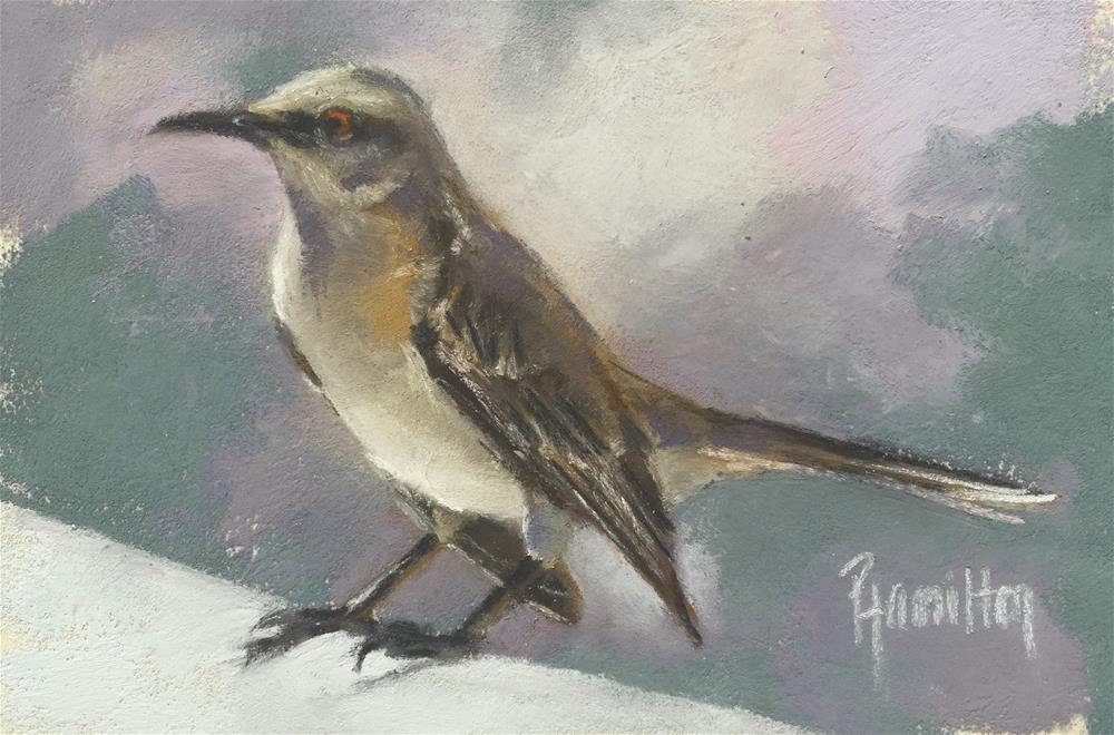 """""""Visiting Jay"""" original fine art by Pamela Hamilton"""