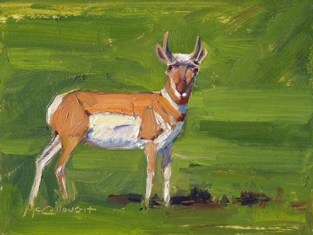 """Antelope"" original fine art by Susan McCullough"