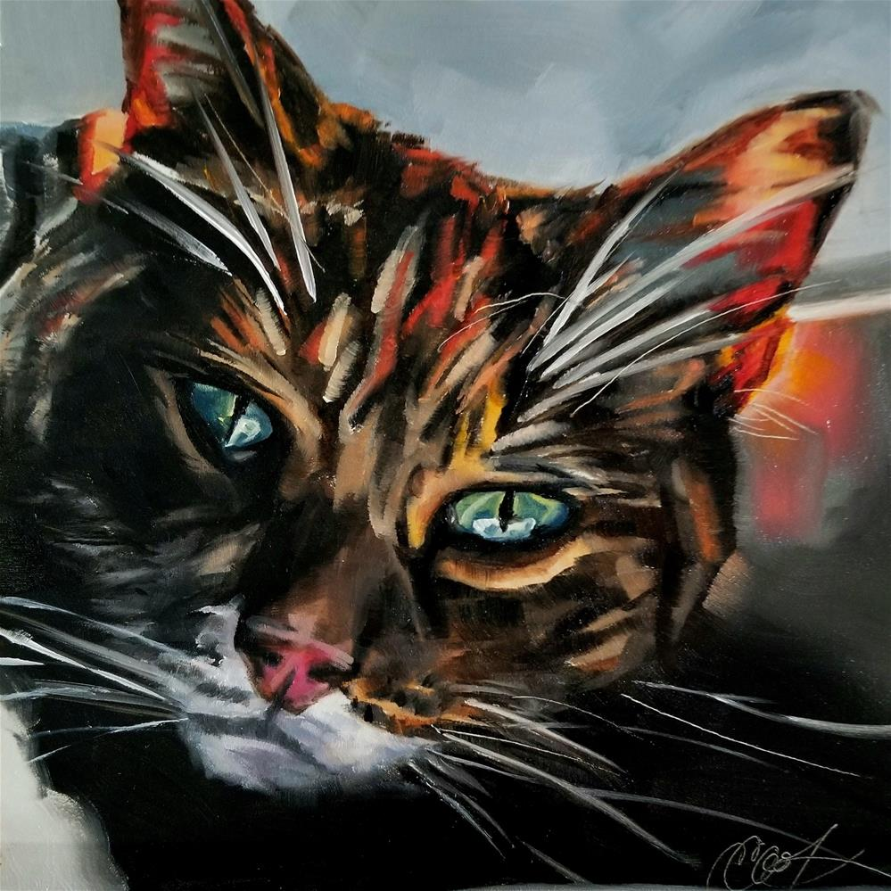 """Heat Seeker"" original fine art by Crystal Cook"