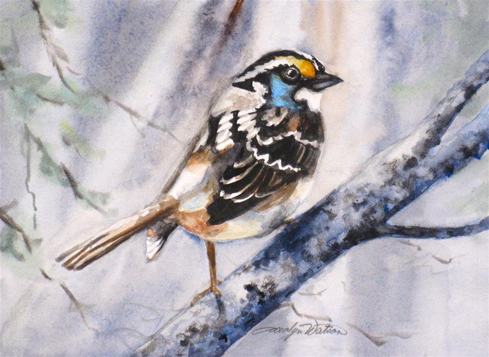 """""""Winter Bird"""" original fine art by carolyn watson"""