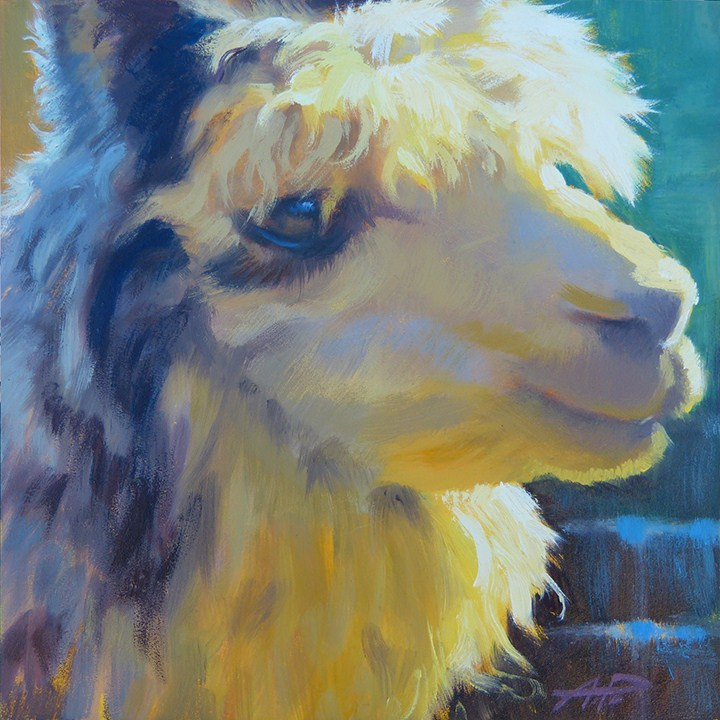"""Alpaca Bangs - Day 10"" original fine art by Anette Power"