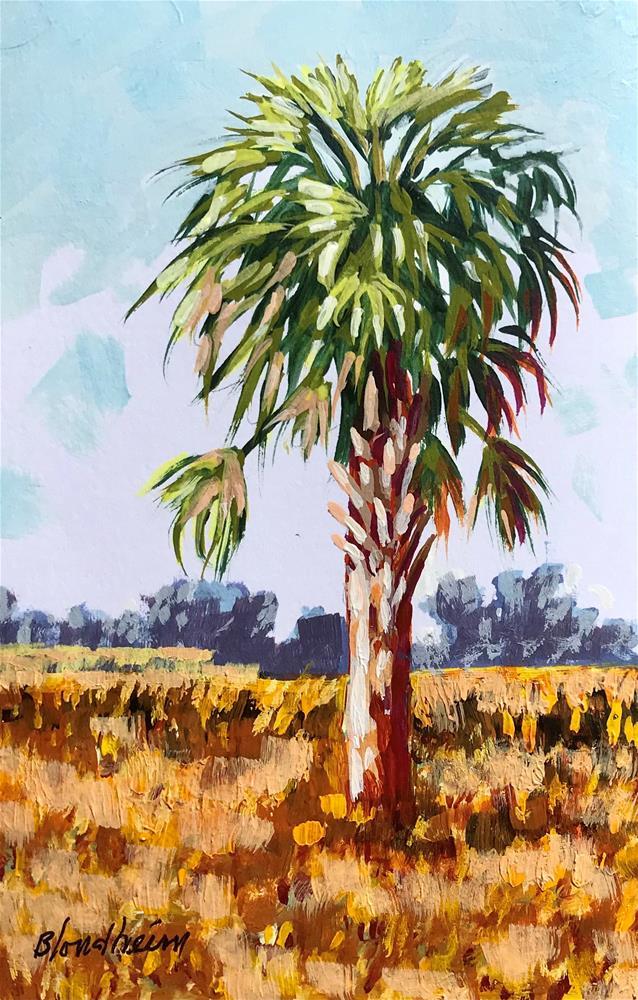 """""""Winter Cabbage Palm"""" original fine art by Linda Blondheim"""