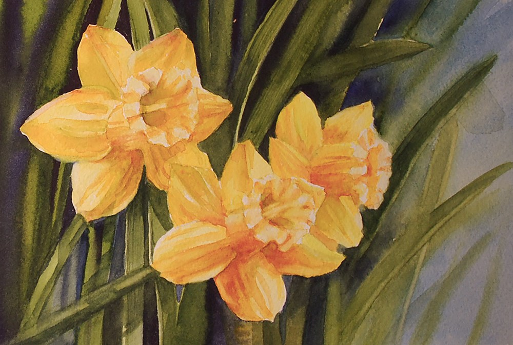 """""""Three Daffodils"""" original fine art by Mary Anderson"""