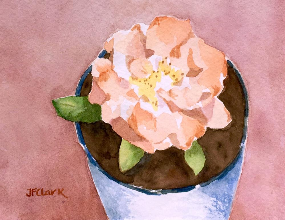 """Potted Begonia"" original fine art by Judith Freeman Clark"