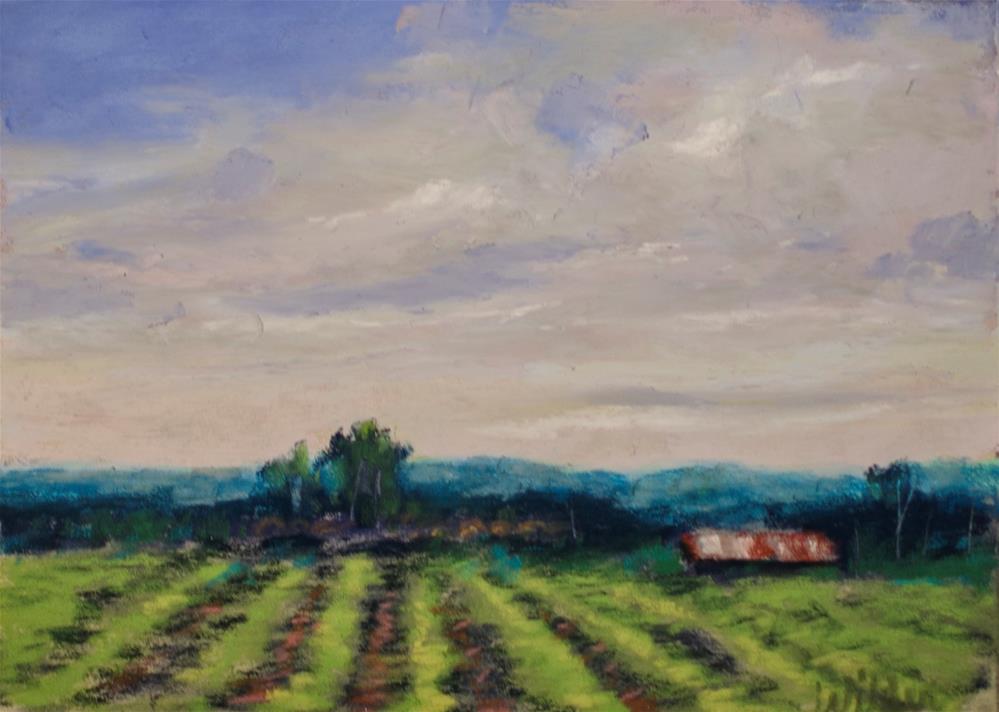 """""""Crop Lines"""" original fine art by Judy Wilder Dalton"""