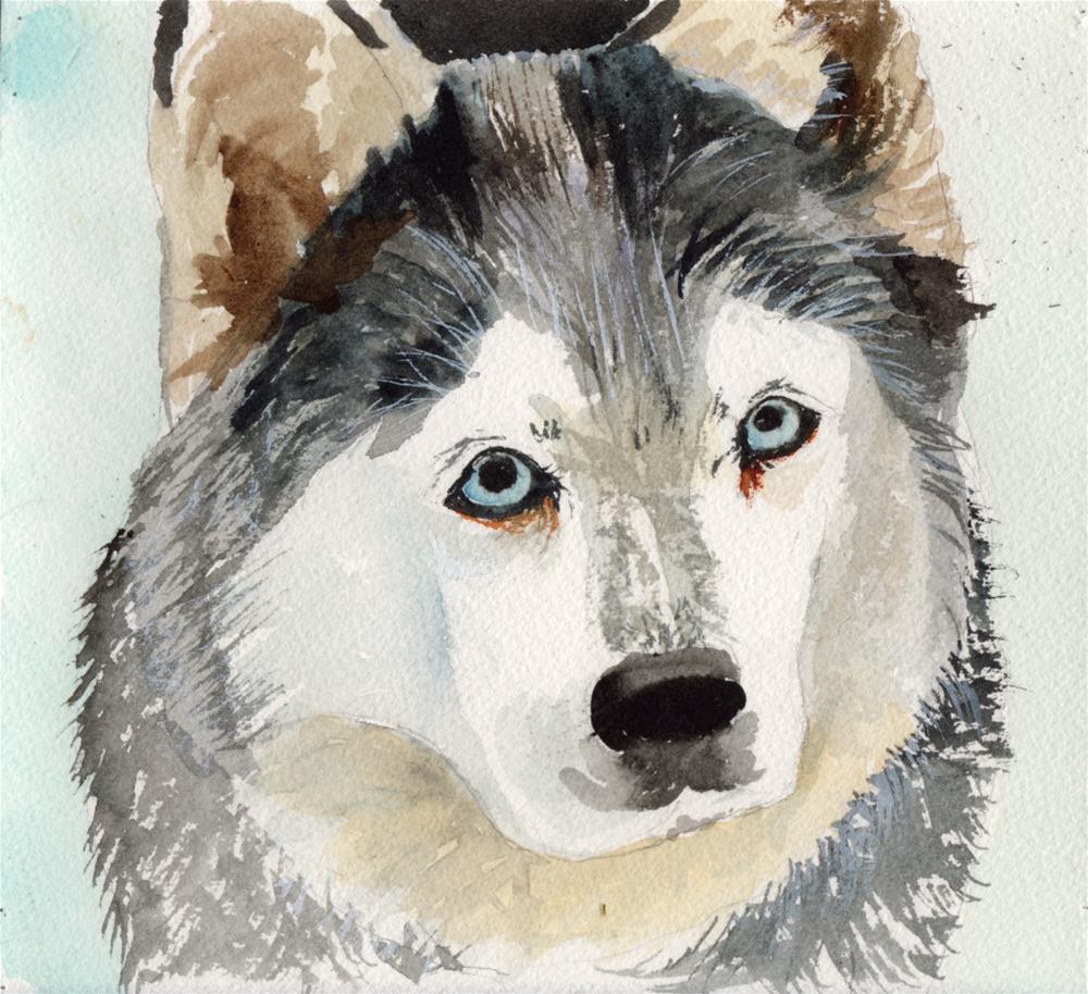 """Huskie"" original fine art by Bunny Griffeth"