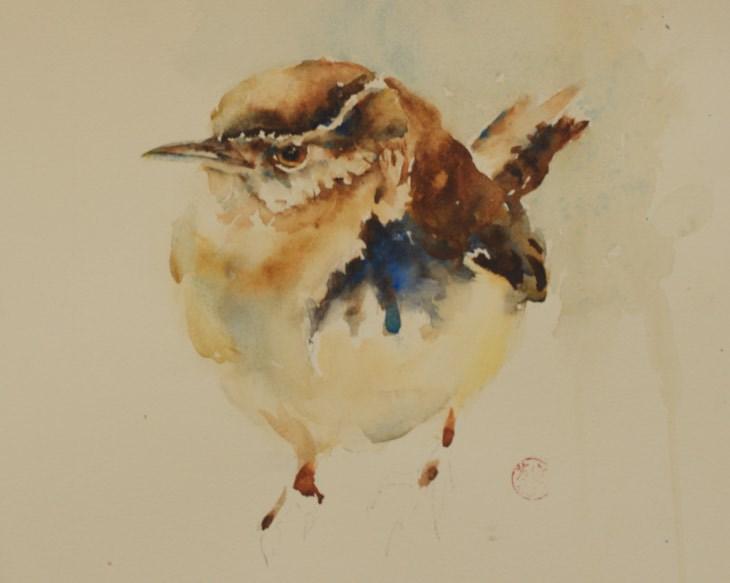 """Grumpy Wren"" original fine art by Sue Churchgrant"