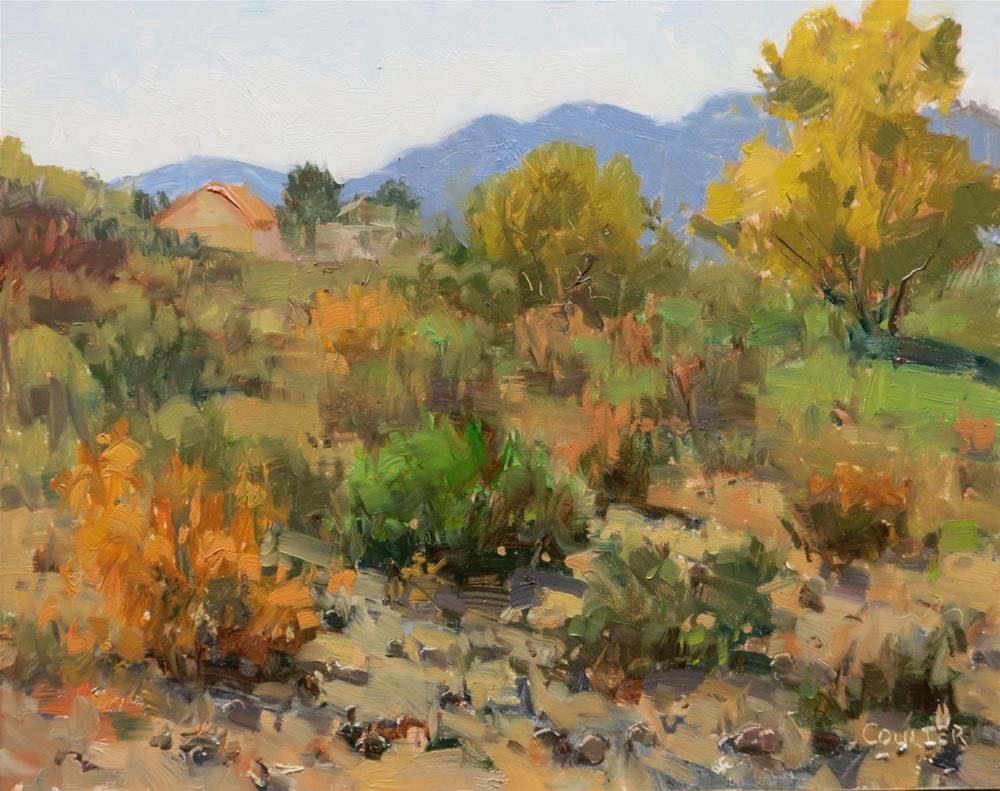 """DESERT WASH"" original fine art by James Coulter"