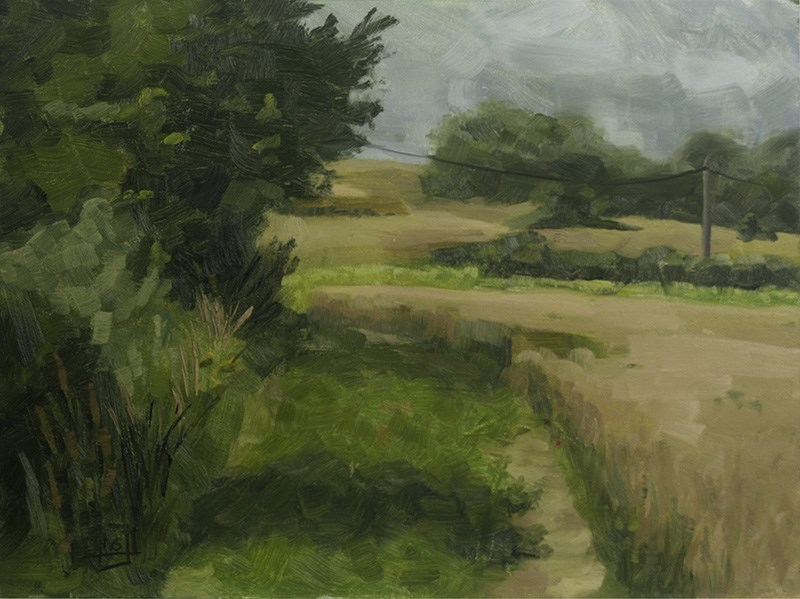 """Wheat Fields"" original fine art by Johan Derycke"