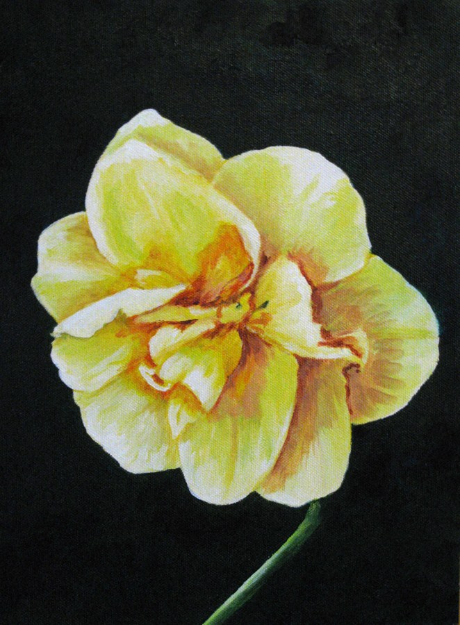 """Single Bloom"" original fine art by Nan Johnson"