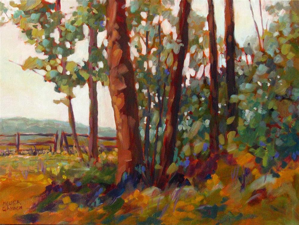 """Edge of the Field"" original fine art by Melissa Gannon"