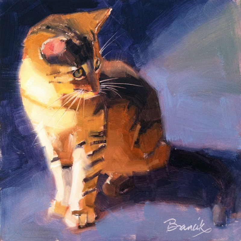 """Calico Kitten"" original fine art by Candace Brancik"
