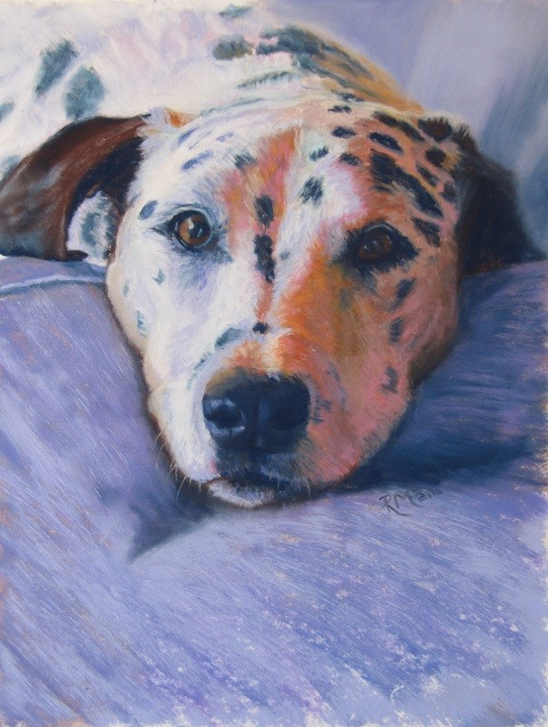 """Dalmation"" original fine art by Ruth Mann"
