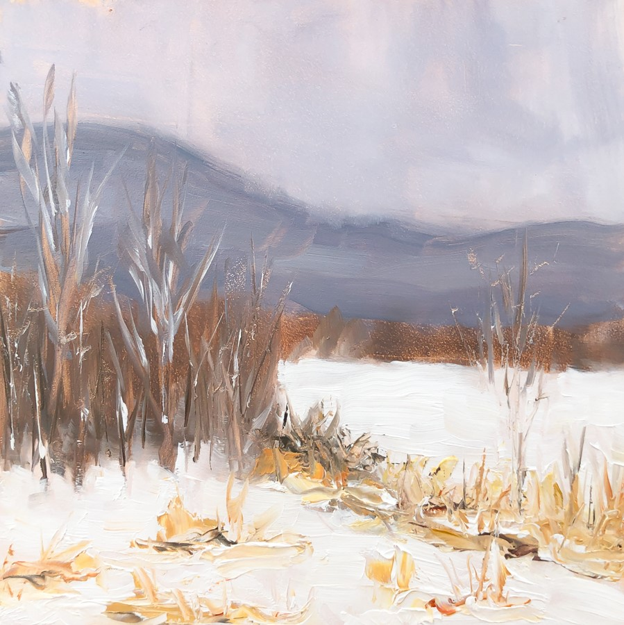 """#244 - Fresh Snow - Morristown, VT"" original fine art by Sara Gray"