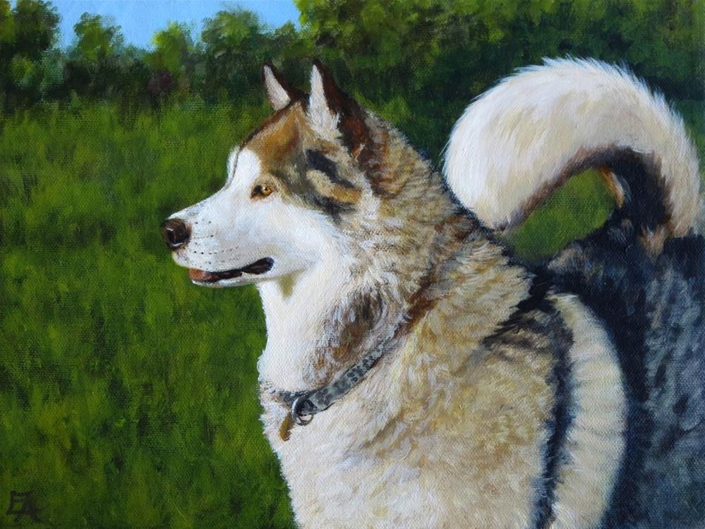 """Alaskan Malamute Commission"" original fine art by Elizabeth Elgin"
