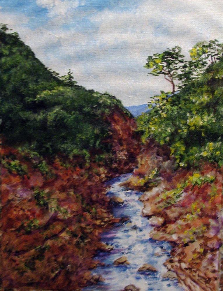 """Bhutan Stream"" original fine art by Nan Johnson"