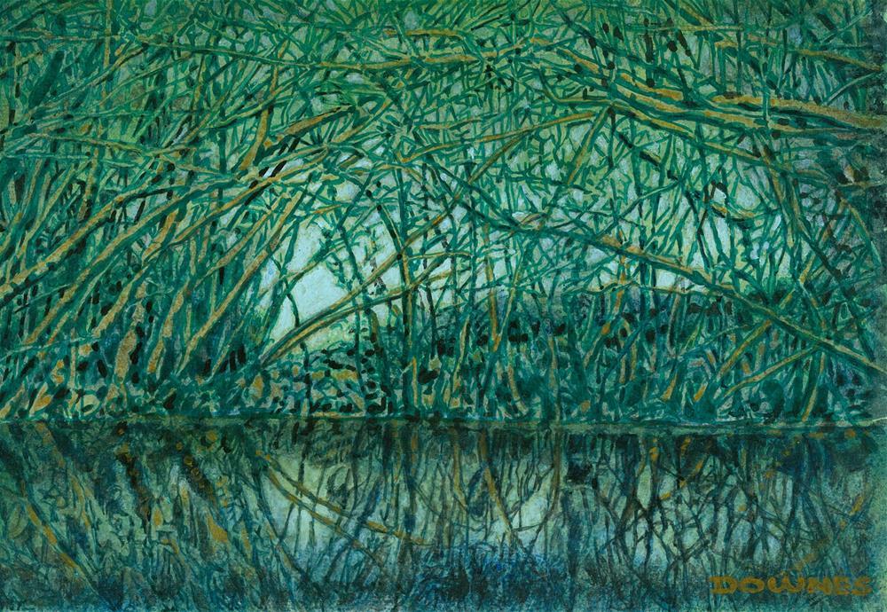 """""""281 MANGROVE CREEK"""" original fine art by Trevor Downes"""