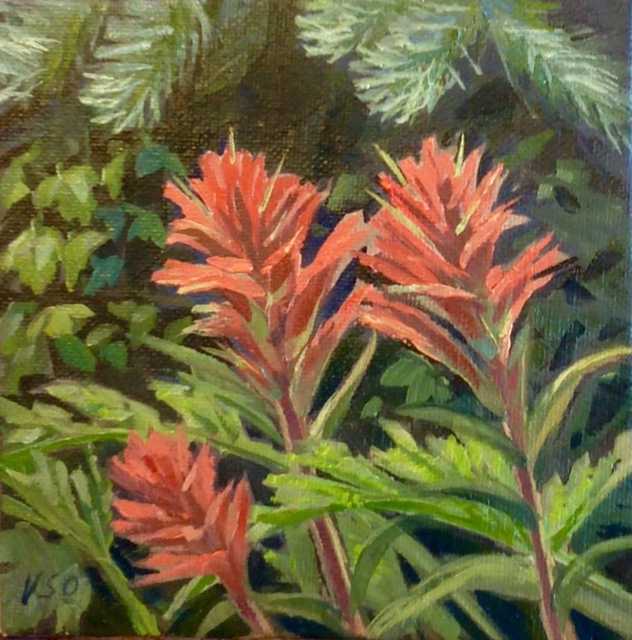 """""""Indian paintbrush II"""" original fine art by Valerie Orlemann"""