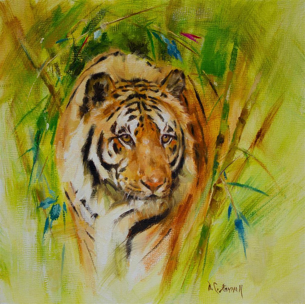 """Tiger in Bamboo"" original fine art by Donna C Farrell"
