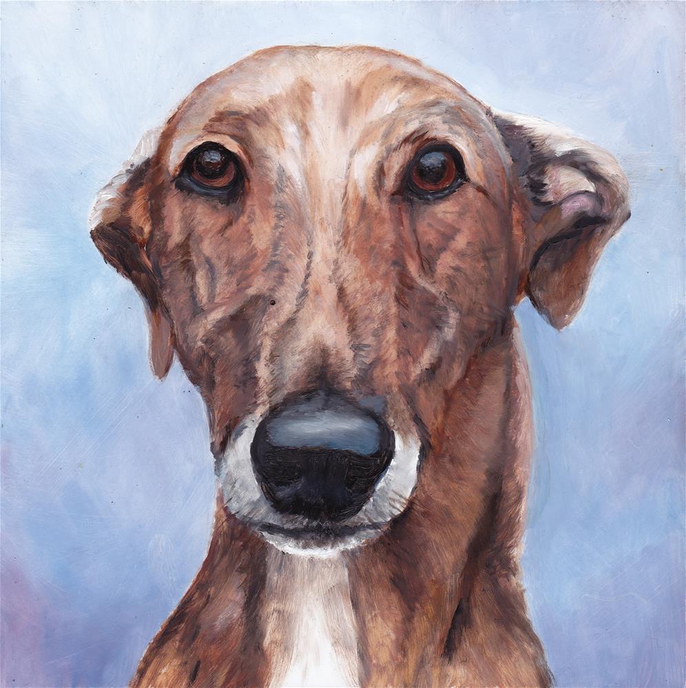 """Greyhound Face"" original fine art by Charlotte Yealey"