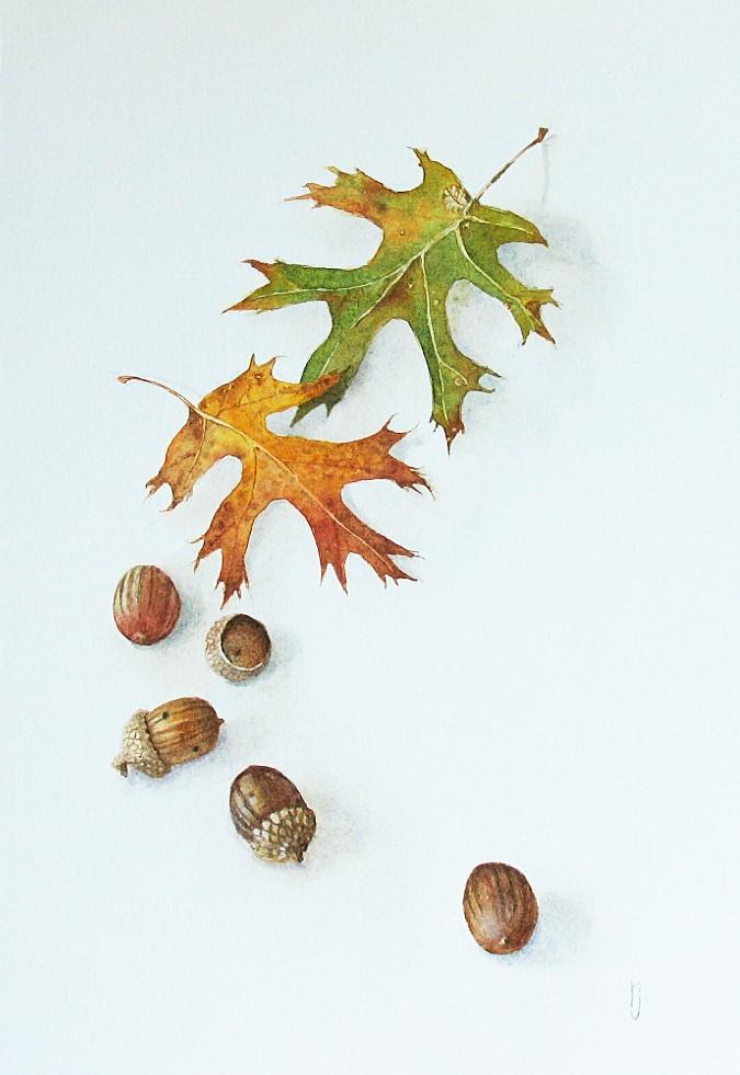 """Autumn and Acorns"" original fine art by Robyn Jorde"